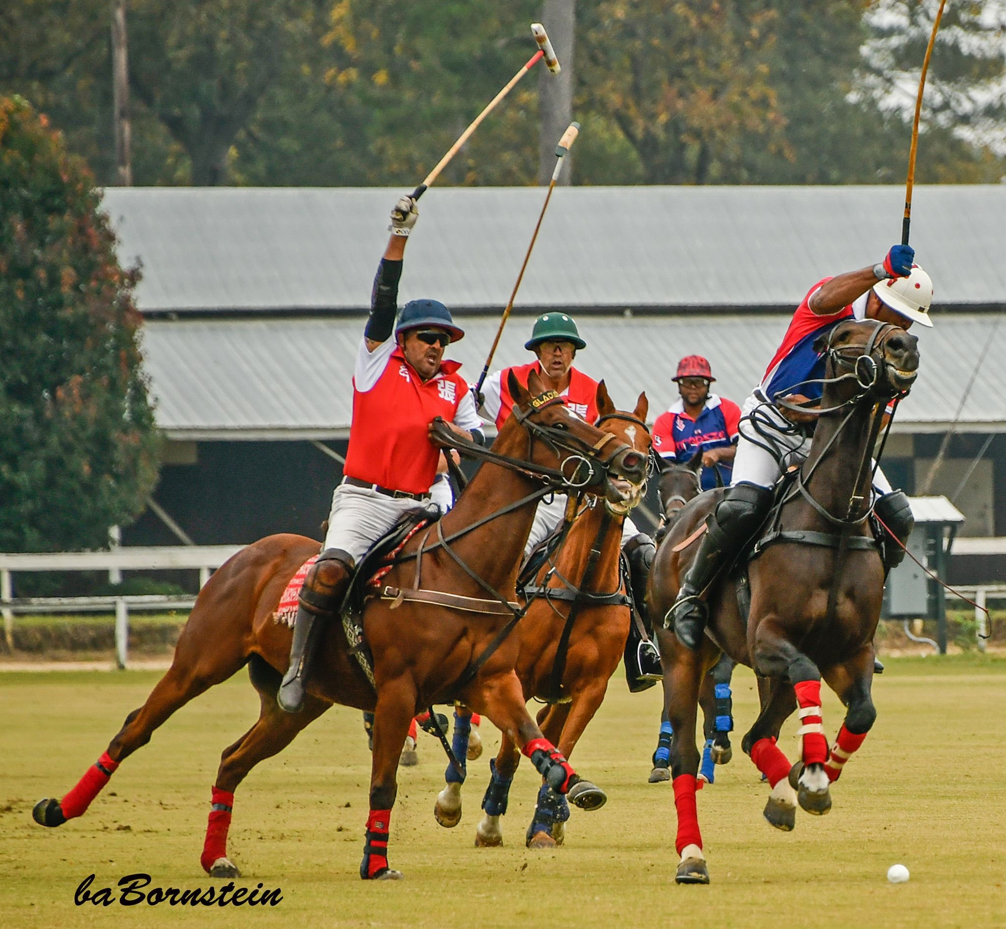 Polo is one of the best spring events in Aiken, SC.
