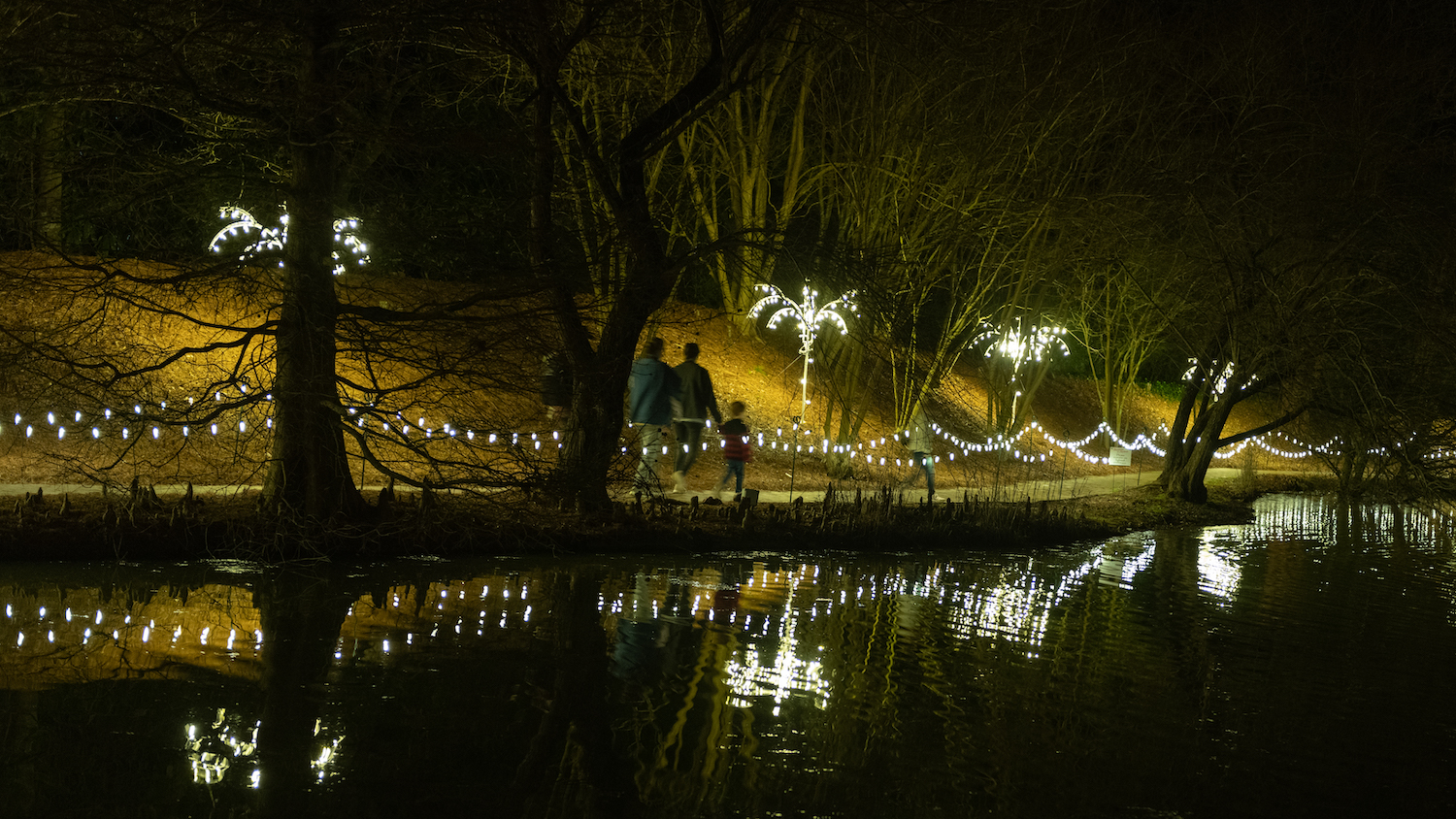 Christmas in Hopelands is one of the best things to do in December in Aiken in 2020.